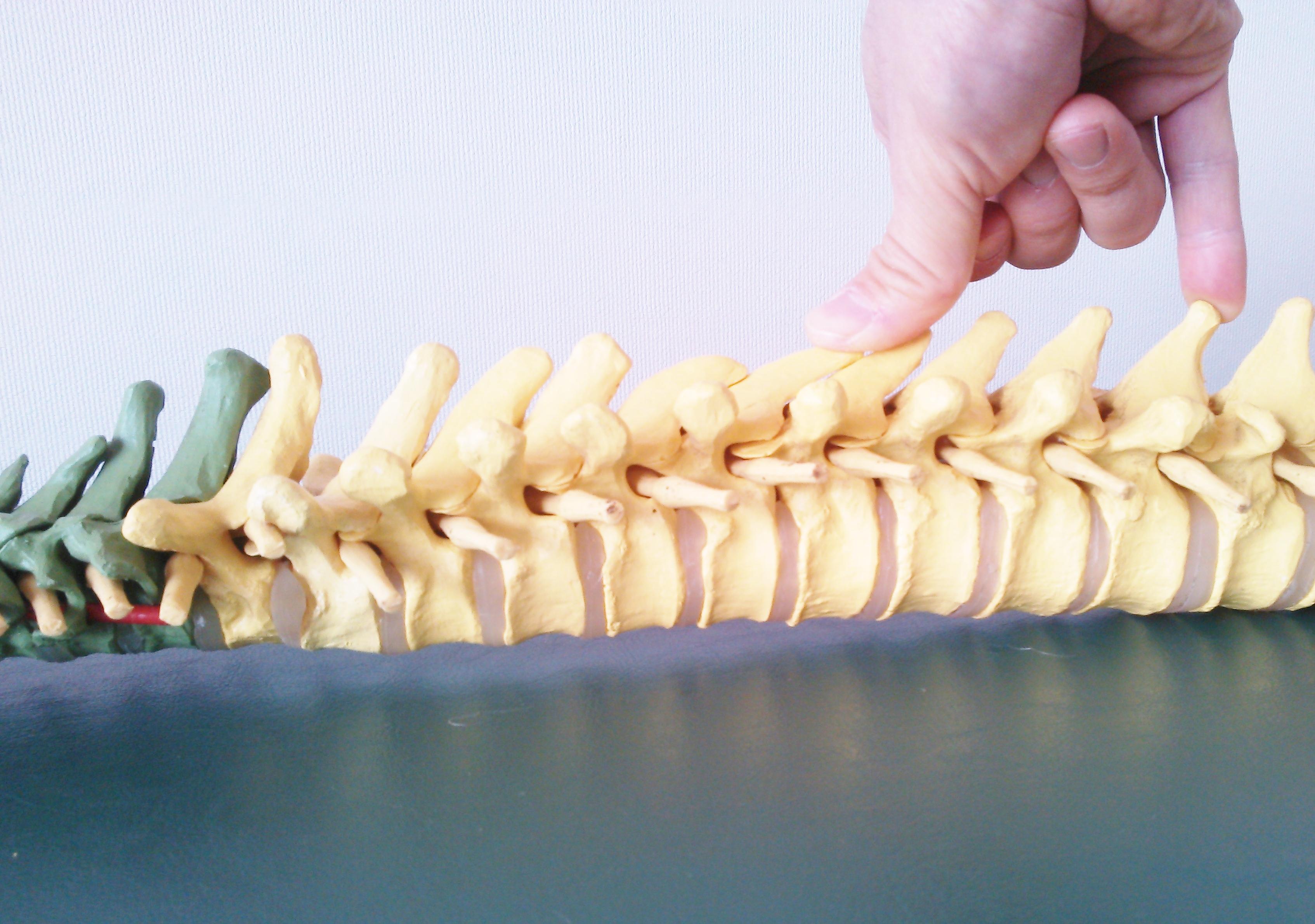 五十肩、成長痛、スポーツ外傷、障害の専門院
